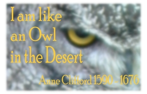 Owl Quote i am Like and Owl in the Desert. Anne Clifford